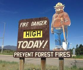 Smokey the Bear fire ban